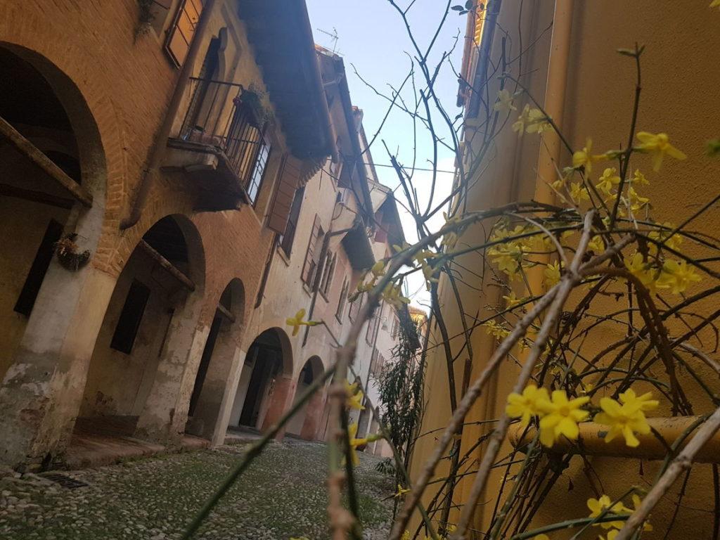 Экскурсии по Тревизо (фото)